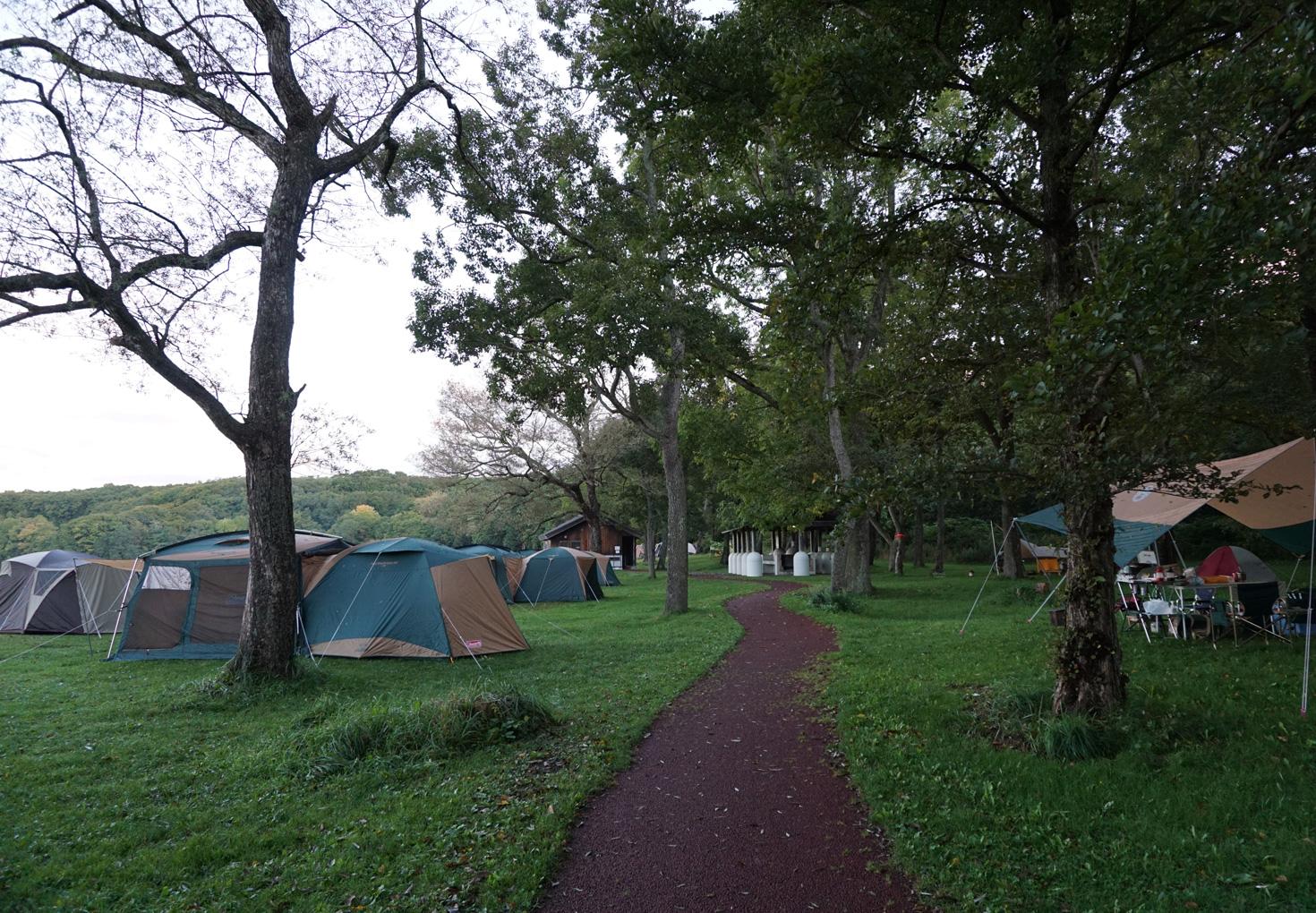 東大沼キャンプ場-キャンプスペース