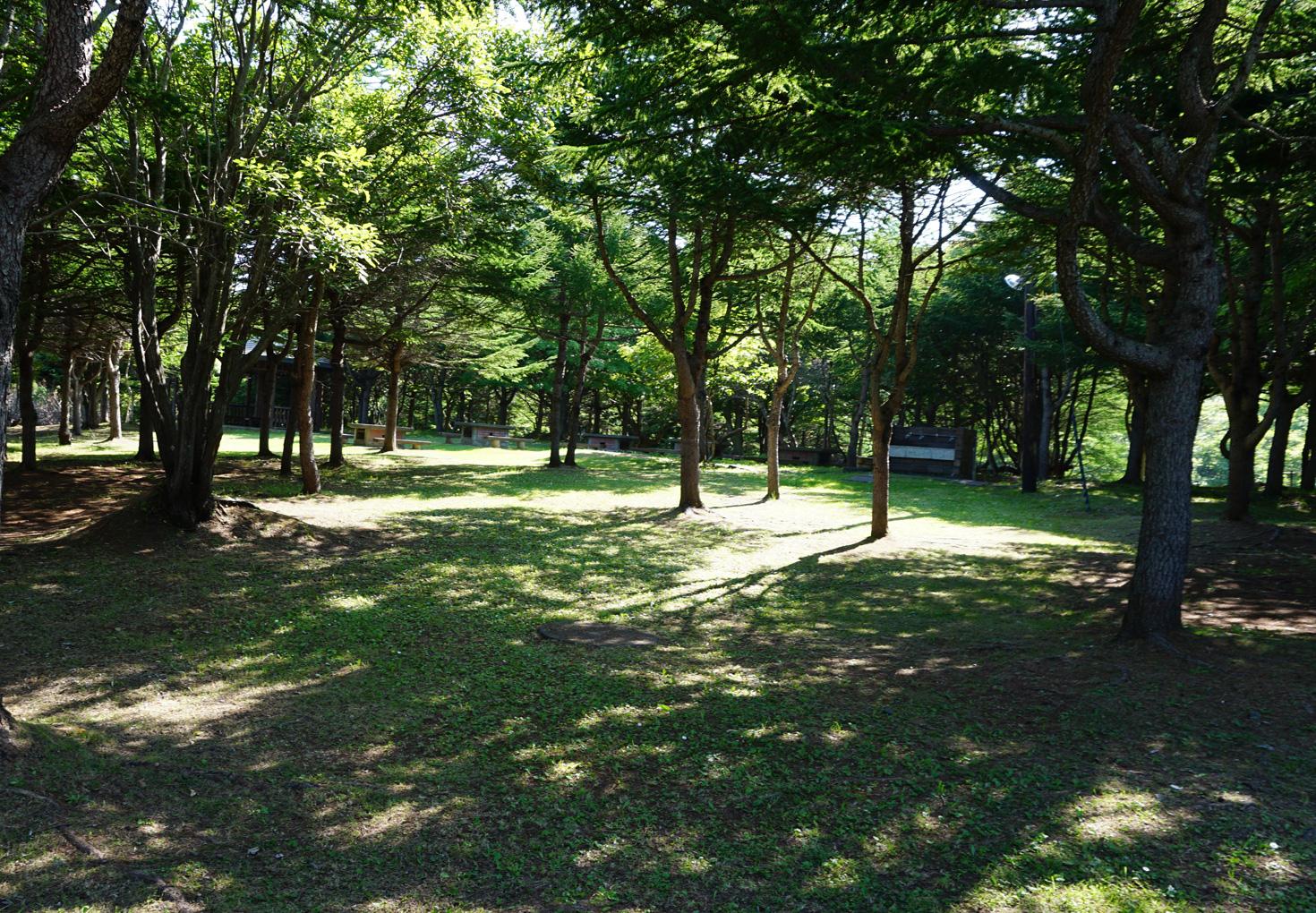 稚内森林公園キャンプ場05