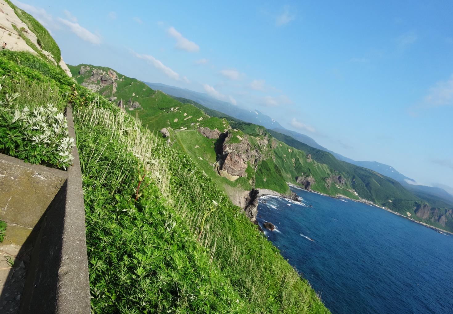 神威岬展望台 断崖絶壁の風景