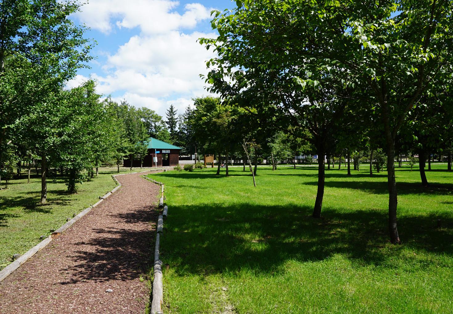 安平町鹿公園キャンプ場23