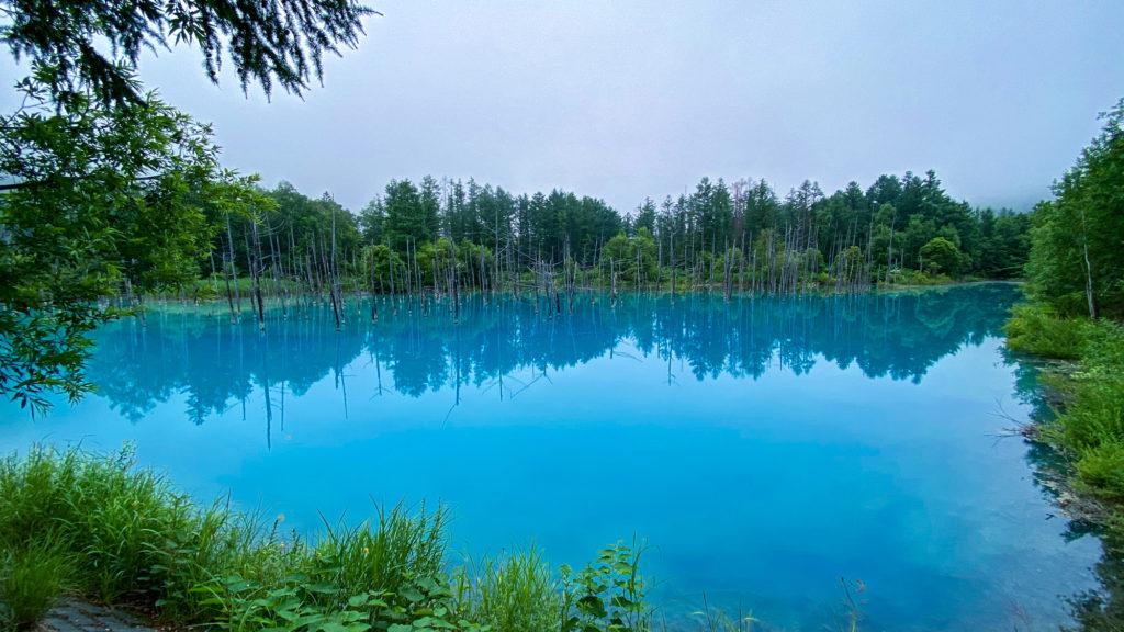 美瑛町 白金 青い池 アルミニウム