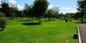 安平町 鹿公園第二キャンプ場