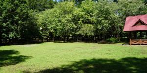 安平町 鹿公園 第一キャンプ場