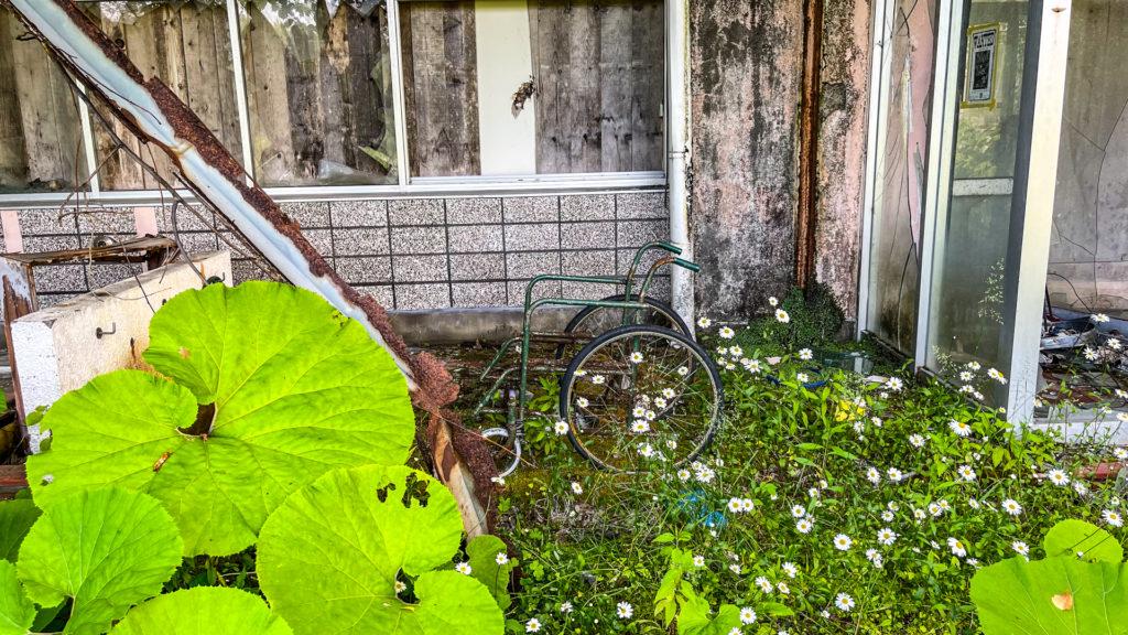 太陽小学校 (はぼろ緑の村) 車椅子