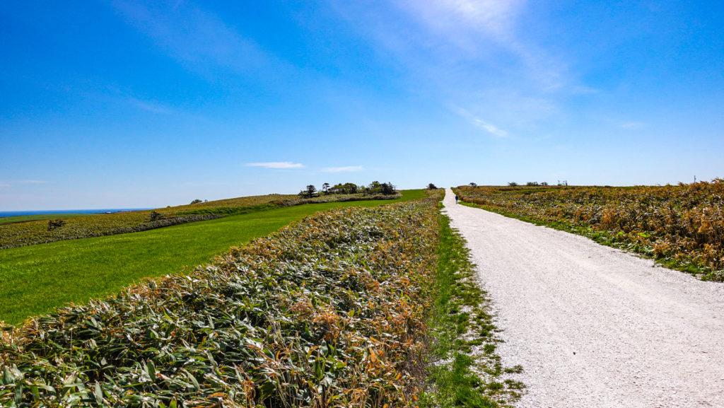 稚内白い道シェルロード宗谷丘陵