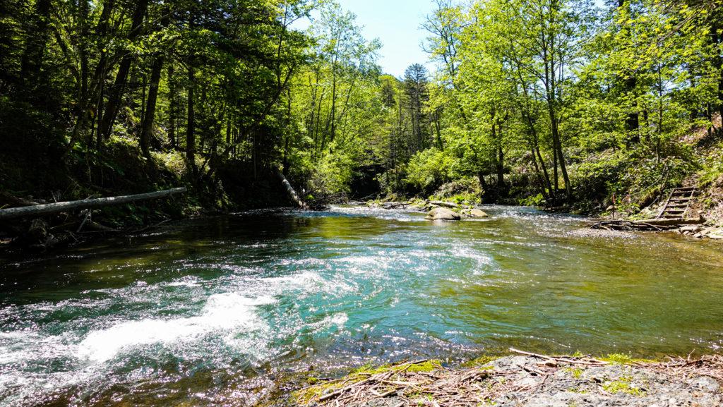 鹿の湯 シイシカリベツ川下流