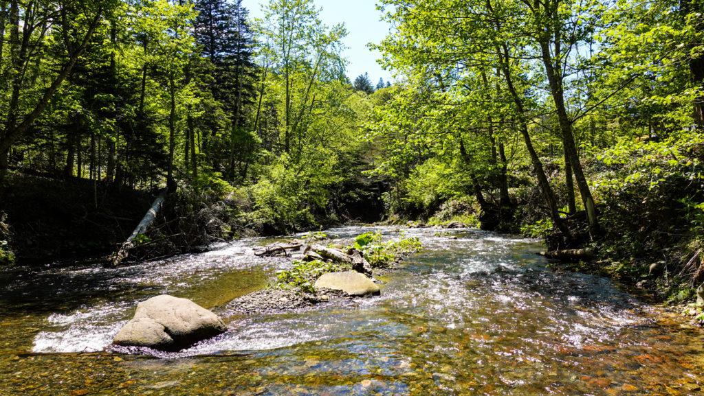 鹿の湯 シイシカリベツ川